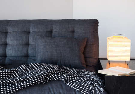 Woonkamer detail. Gezellig grijze bank met kussen en gooi, tafellamp en boek.