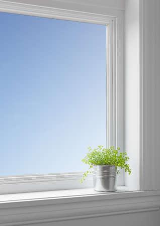 큰 깨끗한 창문을 통해 본 푸른 하늘이 창턱에 녹색 식물,