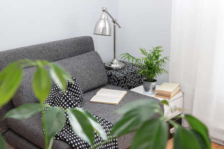 Comfortable place for reading in a living room, decorated with plants  Stock Photo - 20325009