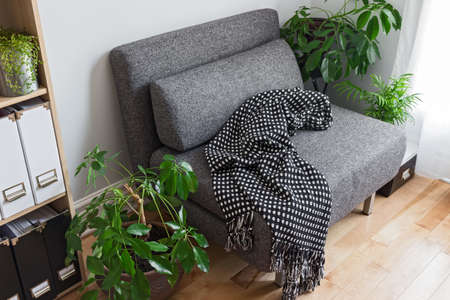 Living room with bright green plants, bookshelf and gray armchair