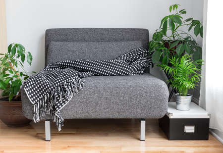 Grijze stof stoel met gezellige worp, en groene planten in de woonkamer. Stockfoto