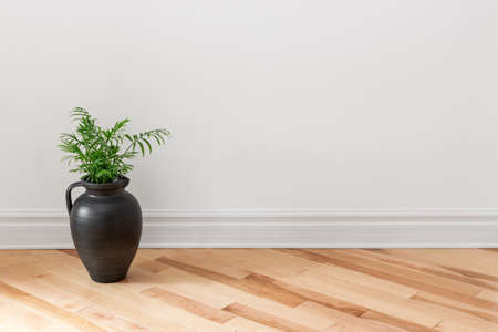 Amphora with green plant decorating an empty room. Stockfoto
