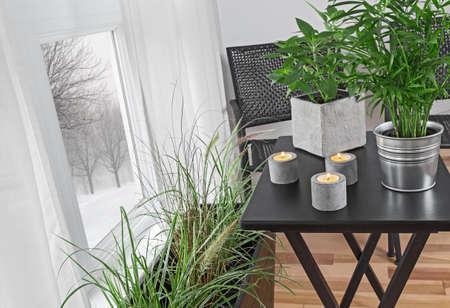 창 뒤의 겨울 풍경, 방을 장식 녹색 식물과 촛불.