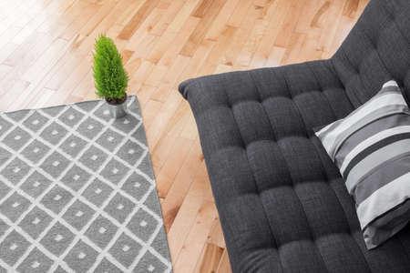간단한 장식 밝은 현대 거실의 세부 사항