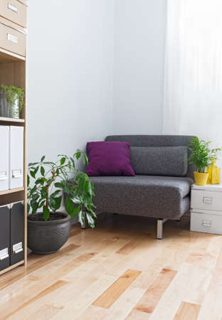 Corner of a living room with gray armchair, bookcase and plants