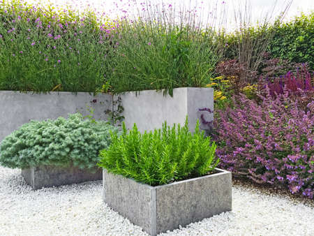 Piękny ogród z kwitnących roślin, beton i kamiennymi detalami. Współczesne wzornictwo.