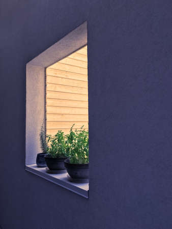 Window decorated with potted herbs. Detail of an urban residential building. 版權商用圖片 - 78792540