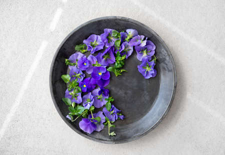 Blue pansies in a metal tray, on gray concrete background.