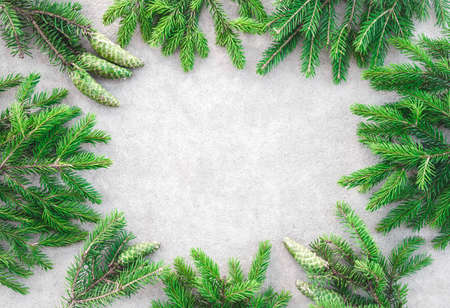 Frame made of green pine branches with cones, on light gray concrete background. Stock Photo