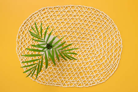 Palm leaves in a vase on a decorative yellow background. Tropical summer theme.