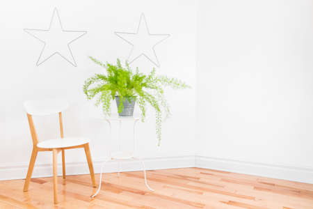 Bright room corner with metal stars decorating white walls, simple furniture and beautiful Asparagus fern plant. Space for text. 写真素材