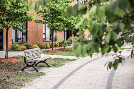 Paved path, bench and brick building seen through green leaves. Green city neighborhood in spring. Standard-Bild