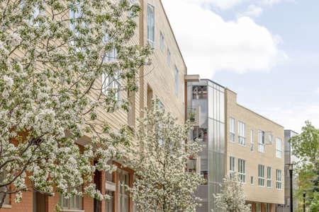 Modern neighborhood in spring. Blooming trees and buildings under blue sky. Standard-Bild - 142478445