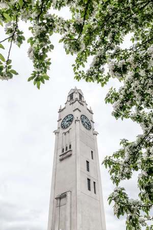 White clock tower seen through blooming trees. Spring in the Old Port of Montreal (Quebec, Canada). Standard-Bild