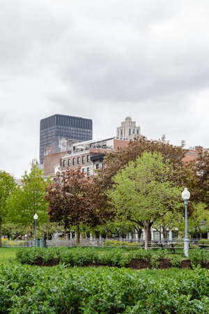 Spring in the Old Port of Montreal (Quebec, Canada). Fresh leaves, green grass, and modern buildings.