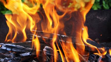 seemingly: Fire - seemingly living element that burns, heats, highlights, but at the same time, to hurt and kill