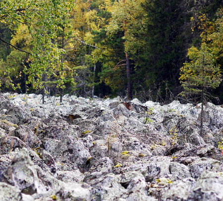 the natural phenomena: Stone river Qurum is a big boulder field, one of the most amazing natural phenomena mountains of the Urals.
