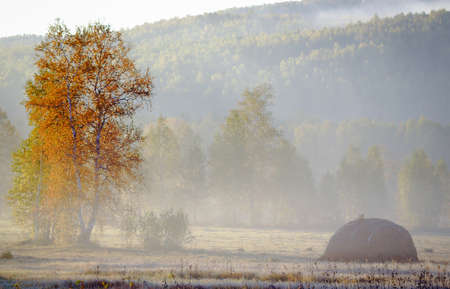 The haystack in the misty morning on the edge of the autumn forest.