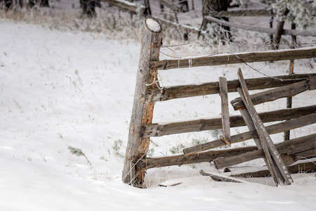 The old rickety fence with broken planks and barbed wire. Stock Photo