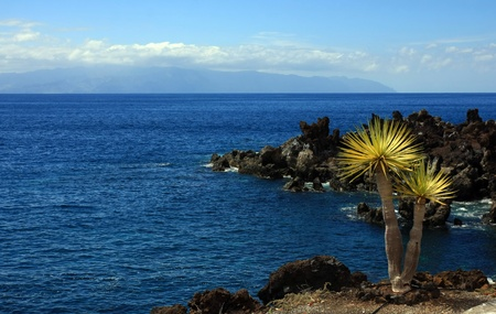 landscape in Puerto Santiago, Los Gigantes, Tenerife, Spain Stock Photo