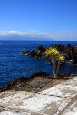 landscape in Puerto Santiago, Los Gigantes, Tenerife, Spain Stock Photo - 13526449