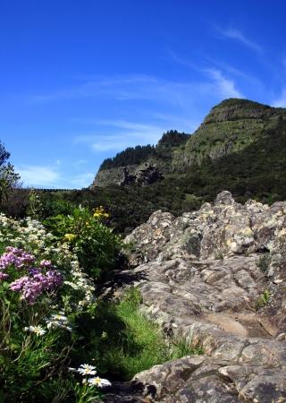 an amazing landscape in La Gomera island, Canary islands, Spain Stock Photo