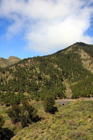 the way to El Teide volcano, Tenerife, Canary islands photo