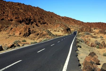 wild canary: the amazing wild way to El Teide volcano, Tenerife, Canary islands