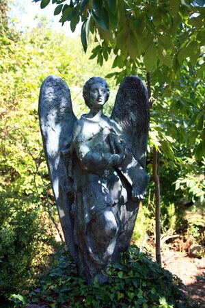 Beautiful Sculpture of angel photo