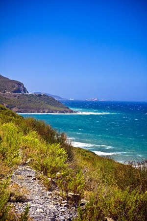 Crystal clean sea along beuty green coastline in amazing island Corsica photo