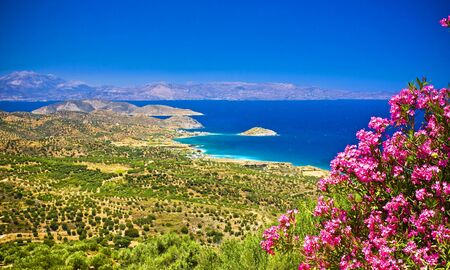 amazing landscape of Crete with beautiful flowers Stock Photo
