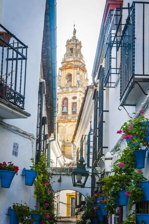 cobbled: Typical cobbled mediterranean street of white houses in Cordoba