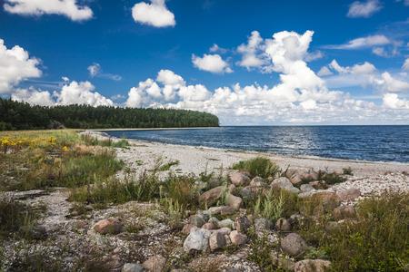 Beautiful landscape in Saaremaa island, Estonia