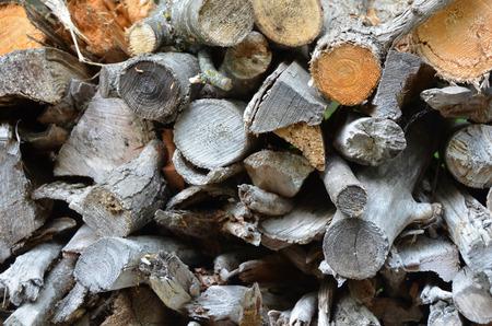 Fire Wood Pile