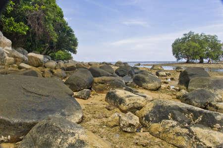 A rocky beach photo