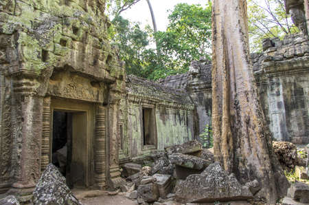 Ruins of Ta Prohm temple at Angkor in Siem Reap Cambodia photo