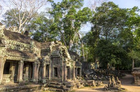 cambodia: Ta Prohm temple ruins at Angkor in Siem Reap, Cambodia