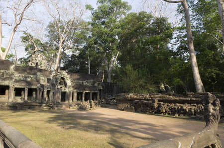 Ta Prohm temple at Angkor in Siem Reap, Cambodia photo