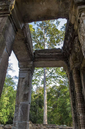 Ta Prohm temple ruins at Angkor in Siem Reap, Cambodia photo