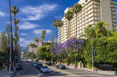 Beverly Hills, California - June 10, 2013 : Beautiful Palm lined S. Doheny Drive in Beverly Hills.