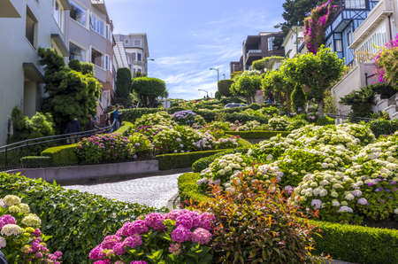 San Francisco, California - June 12, 2013 : Lombard Street is an east?west street in San Francisco, California. It is famous for having a steep, one-block section that consists of eight tight hairpin turns. The street was named after Lombard Street in Phi