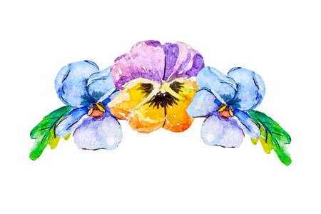 Watercolor pansy. Hand drawn floral illustration with leaves, viola flowers and branches isolated on white background. For design, print and fabric. Stock Photo