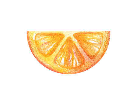 Juicy colorful watercolor citrus for menu, lemonade, summer cocktails.Half circle thin slices of orange or grapefruit in a watercolor style isolated on a white background.