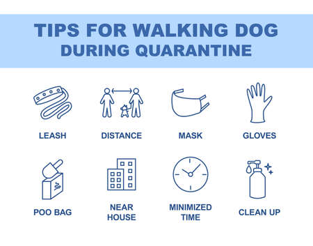 Tips for walking dog during quarantine coronavirus 2019-covid. Recommendations for walking outside linear icons set. Thin line contour symbols. Isolated vector outline illustrations. Editable stroke