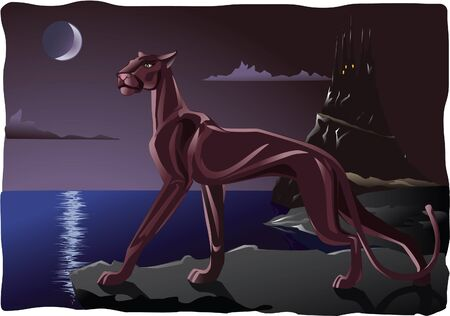Panther on the rock in the night Stock Vector - 15951668