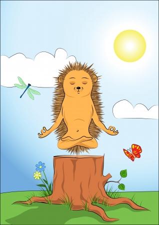 Hedgehog doing yoga-meditation Stock Vector - 15951665