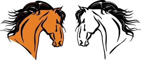 freedom logo: ilustraci�n de una cabeza de caballo hermoso Vectores