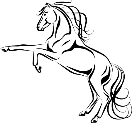 rearing:  Illustration of rearing horse black and white