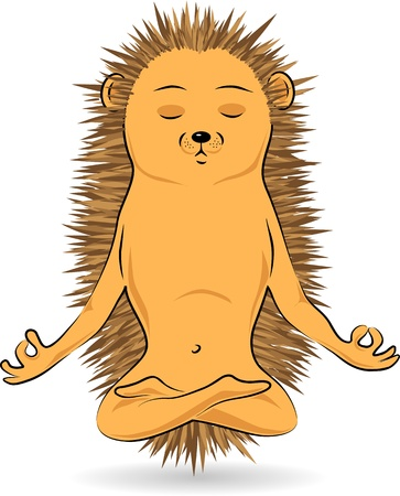 padmasana: Illustration of a hedgehog sitting in the lotus pose and meditating