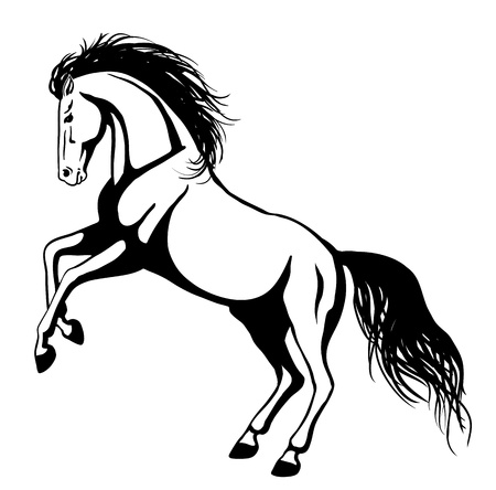 Rearing horse  イラスト・ベクター素材